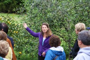 Anne - Our Tour Guide