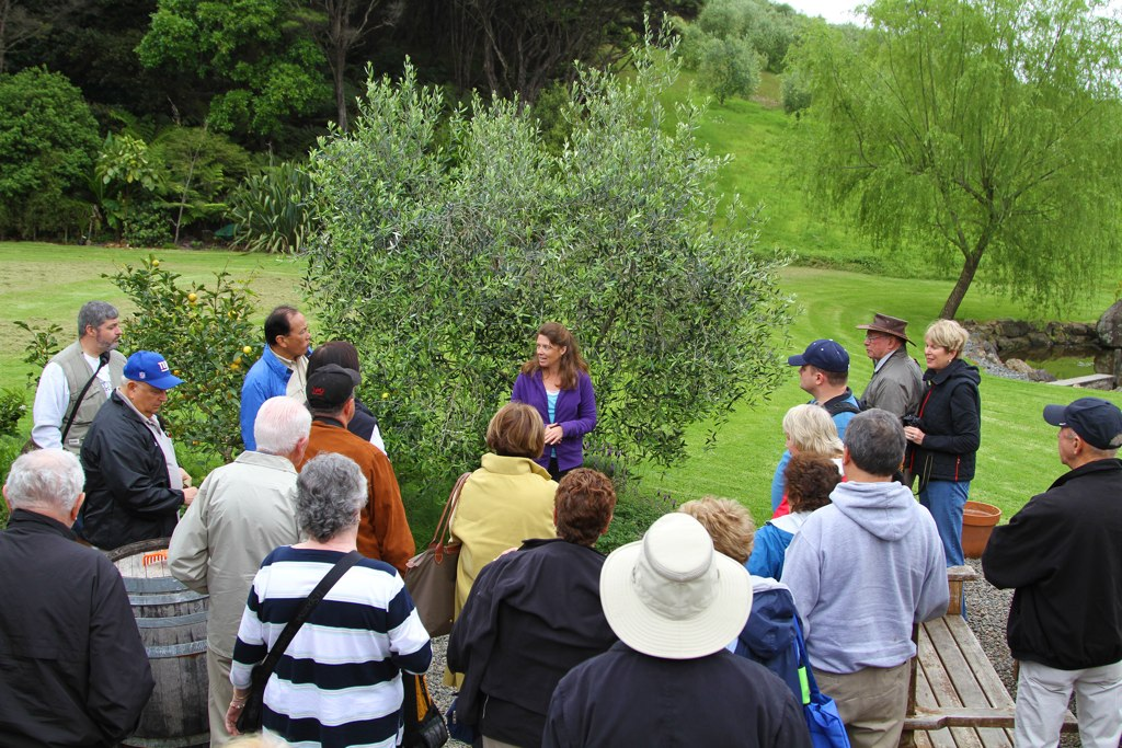 Guided Tour of Rangihoua